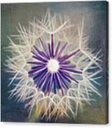 Fluffy Sun - 9bt2a Canvas Print