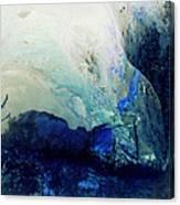 Fluid Enchantment Canvas Print