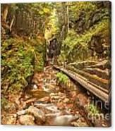 Flume Gorge Landscape Canvas Print