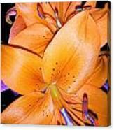 Fluorescent Flower Canvas Print