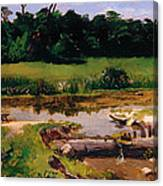 Fluvial Landscape Canvas Print