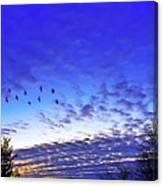 Fly By At Sunset Canvas Print