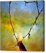 Fly Catcher In Heart Shaped Branch Canvas Print