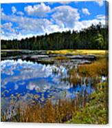 Fly Pond In The Adirondacks II Canvas Print