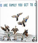 Flying Ducks And A Friends Quote Canvas Print