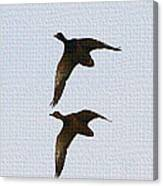 Flying Fast Ducks Canvas Print