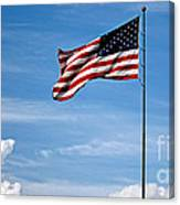 Flying High 7 Panoramic Canvas Print