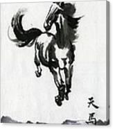 Flying Horse Canvas Print