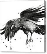 Flying Raven Watercolor Canvas Print