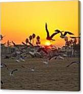Flying To The Rising Sun Canvas Print