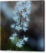 Foam Flower Canvas Print