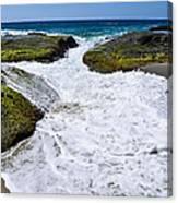 Foamy Water Canvas Print