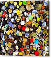 Colorful Gum Canvas Print