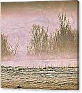 Fog Abstract 2 Canvas Print