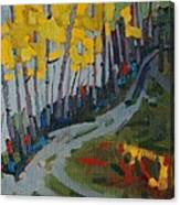 Fog Birches On The Edge Canvas Print