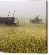 Fog Covered Field Canvas Print