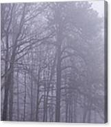 Fog In The Smoky Mountains Canvas Print