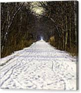 Fog On The Winter Macomb Orchard Trail Canvas Print