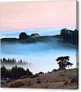 Fog Over The Bodega Coastline In California Canvas Print