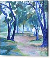 Fog Under The Oaks Canvas Print