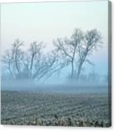 Fog Warriors Canvas Print