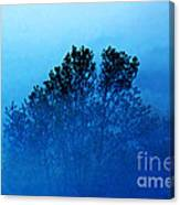 Fogged Out Canvas Print