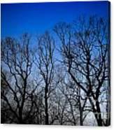 Foggy Blue Morning Canvas Print