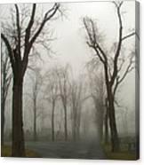 Foggy Cemetery Road Canvas Print