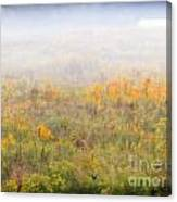 Foggy Country Autumn Morning Canvas Print