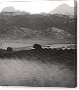 Foggy Countryside Canvas Print