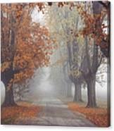 Foggy Driveway Canvas Print