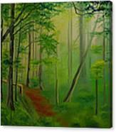 Foggy Forest Path Canvas Print