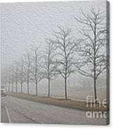 Foggy January Canvas Print