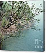 Foggy Lake Superior Canvas Print
