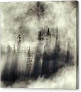 Foggy Landscape Stephens Passage Canvas Print