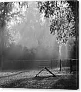 Foggy Morn At Dog Park Canvas Print