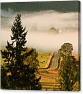 Foggy Morning Drive Canvas Print
