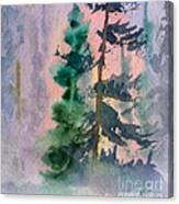 Foggy Patch Canvas Print