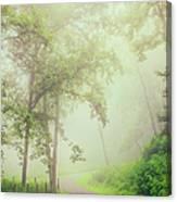 Foggy Path - Blue Ridge Parkway Canvas Print