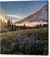 Foggy Rainier Sunset Canvas Print