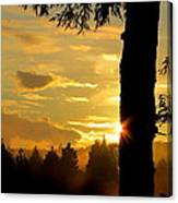 Backyard Sunset Canvas Print