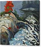 Foggy Whitefish Rapids Canvas Print