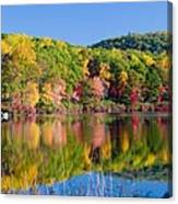 Foilage In The Fall Canvas Print