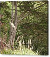Foliage Art Canvas Print