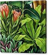 Foliage IIi Canvas Print