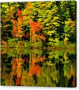 Foliage In New Hampshire Canvas Print