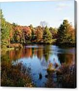 Foliage Pond - Route 66 - Massachusetts Canvas Print