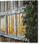 Foliage Reflections Canvas Print