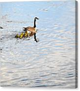 Follow The Leader Canvas Print