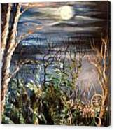 Follow The Lights Canvas Print